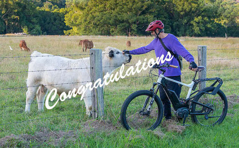 EBike Survey Winners 2020 | Electric Bikes Brisbane