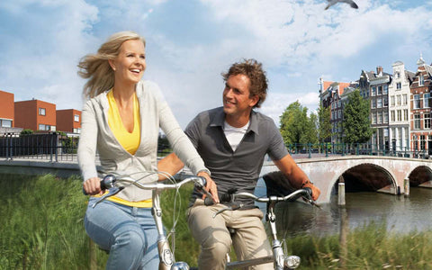Gazelle Grenoble C8 20 HMB Stepthrough ebike