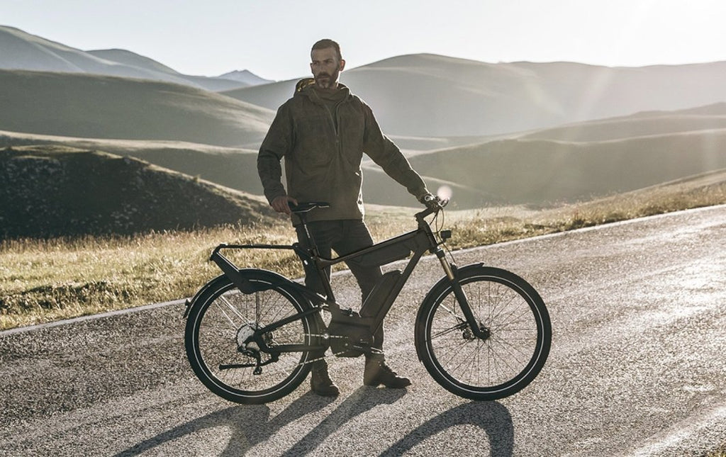 Riese & Muller Delite 25 signature electric bike