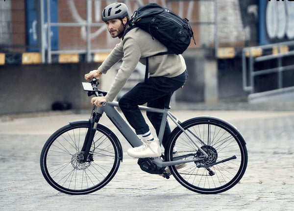 Riese & Muller Roadster Vario | Electric Bikes Brisbane