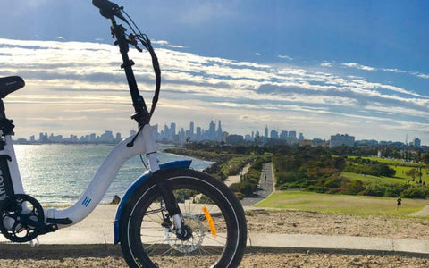 Earth Ant EBike Folding electric bike
