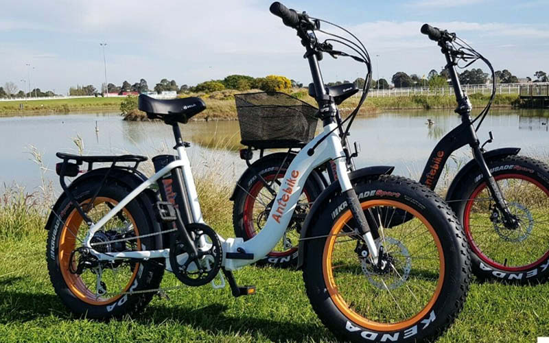 "Earth Ant EBike 4"" Fat Folding E-Bike"