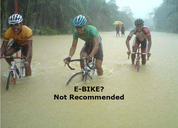 Don't ride ebikes in water that submerges your battery