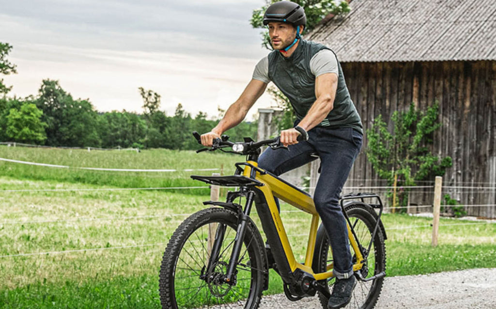 Riese & Muller Supercharger2 ebike 2020