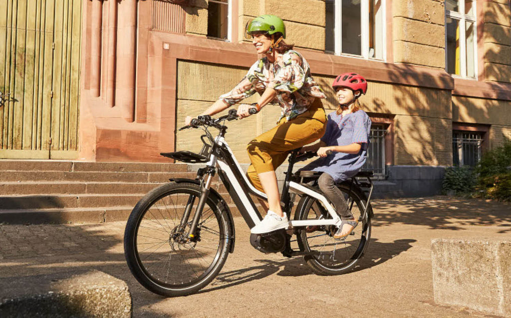 Riese & Muller Multicharger Mixte cargo ebike