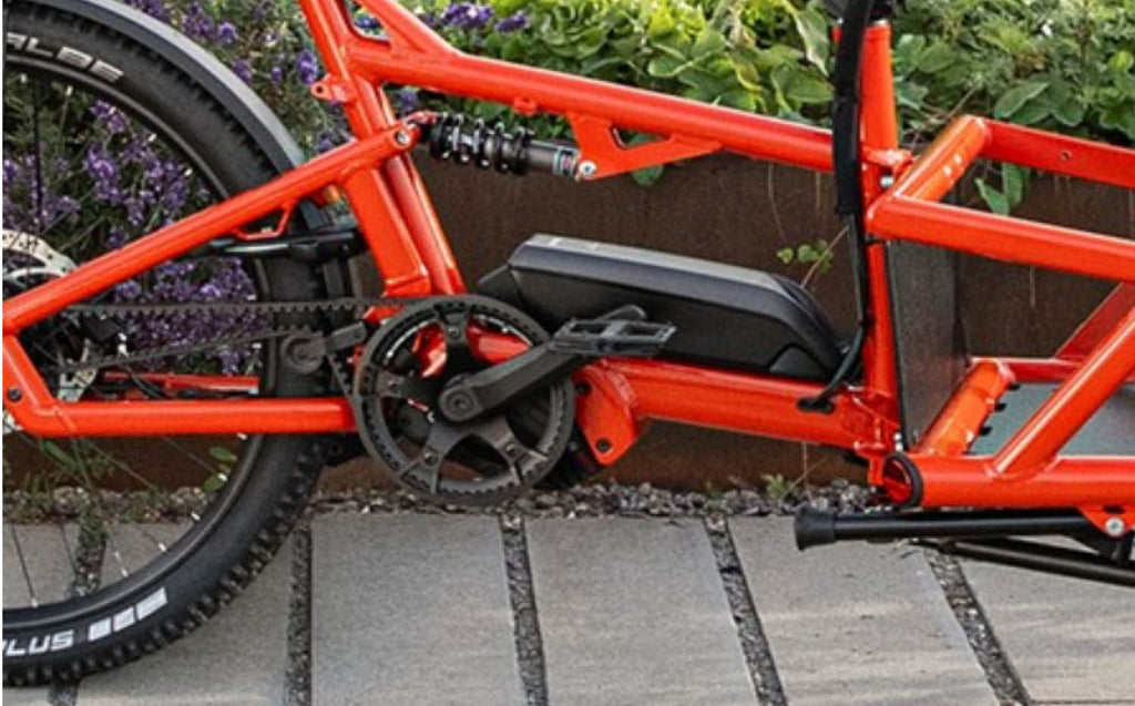 Riese & Muller Load 60 ebike with Bosch cargo line motor
