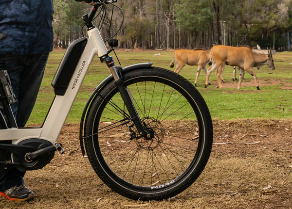 Central West Cycle Trail at Dubbo Zoo   Electric Bikes Brisbane