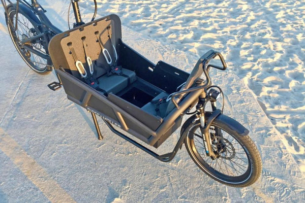 Riese & Muller Load 75 cargo ebike three child config