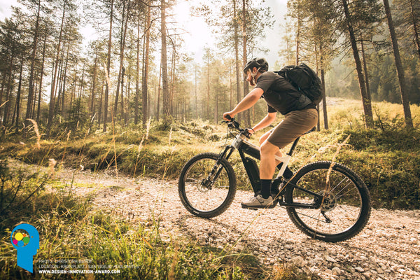 Riese & Muller Delite - electric mountain bike