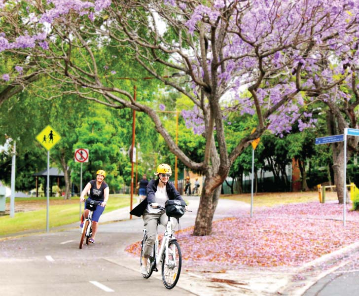 Electric Bike Hire Brisbane - Women Riding Under Jacaranda Tree