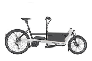 Riese & Muller Packster 40 Cargo E Bike 2020 with Box