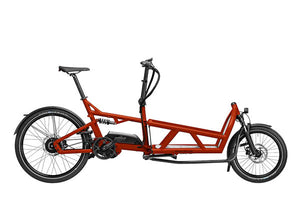 Riese & Muller Load 60 Vario Cargo E Bike 2020 - Sunset