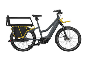 Riese & Muller Multicharger GT Vario ebike, Grey / Curry with safety bar kit