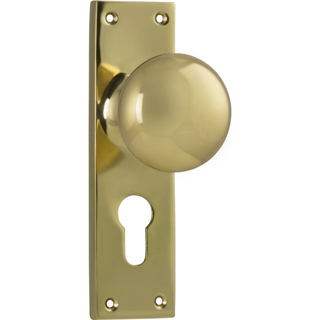 Victorian Knob on Rectangular Plate (Door Handle Set)