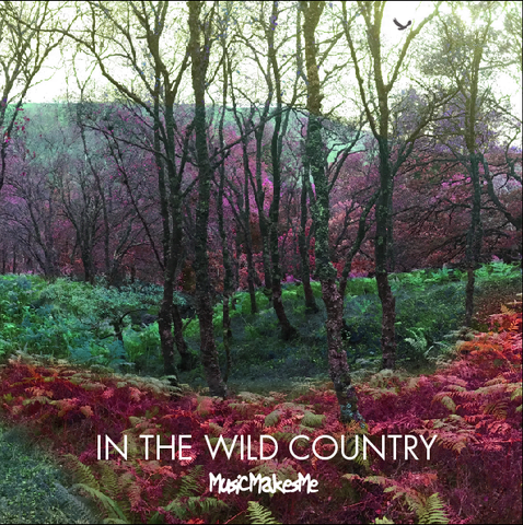 MusicMakesMe: In The Wild Country