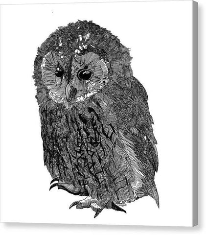 Owl Vic - Canvas Print