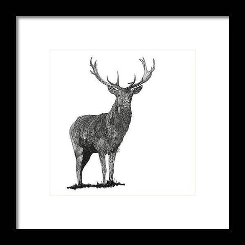 Stagger - Drawing 2 - Framed Print