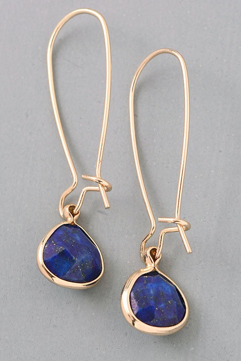 Semi-Precious Stone Charm Dangle Earrings - blue