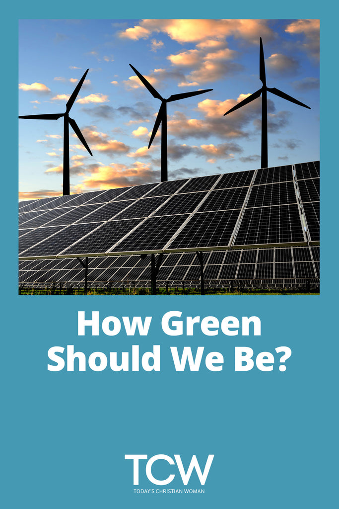 How Green Should We Be?