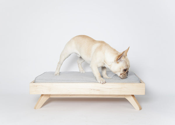 Mid-Century Modern Dog Bed, Joey Low Back - City of Z Design