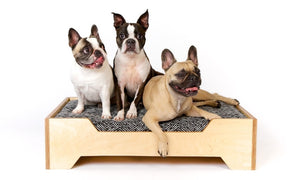 Mid-Century Modern Custom Dog Bed Available in Different Finishes - City of Z Design
