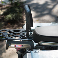 Backrest and Rack Fits BMW 2006-2013 1200 GSA Adventure