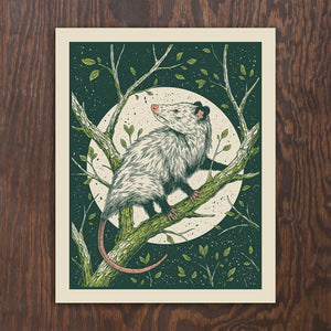 Opossum Screen Print