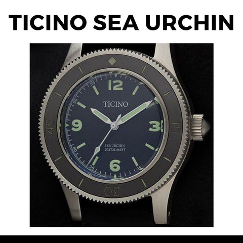 Ticino Sea Urchin Watch