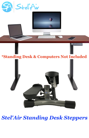 Standing Desk Mini Twister Stepper WT-482