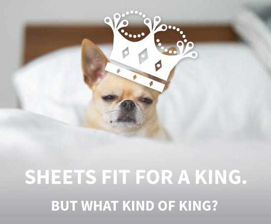 Dog with crown on bed, text: Sheets fit for a king, but what kind of king?