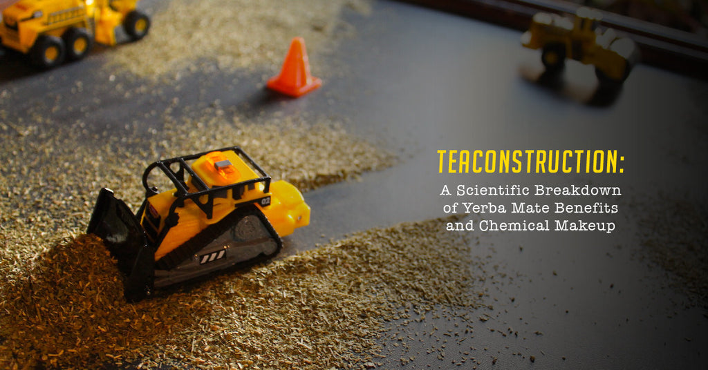 TeaConstruction: A Scientific Breakdown of Yerba Mate Health Benefits and Chemical Makeup