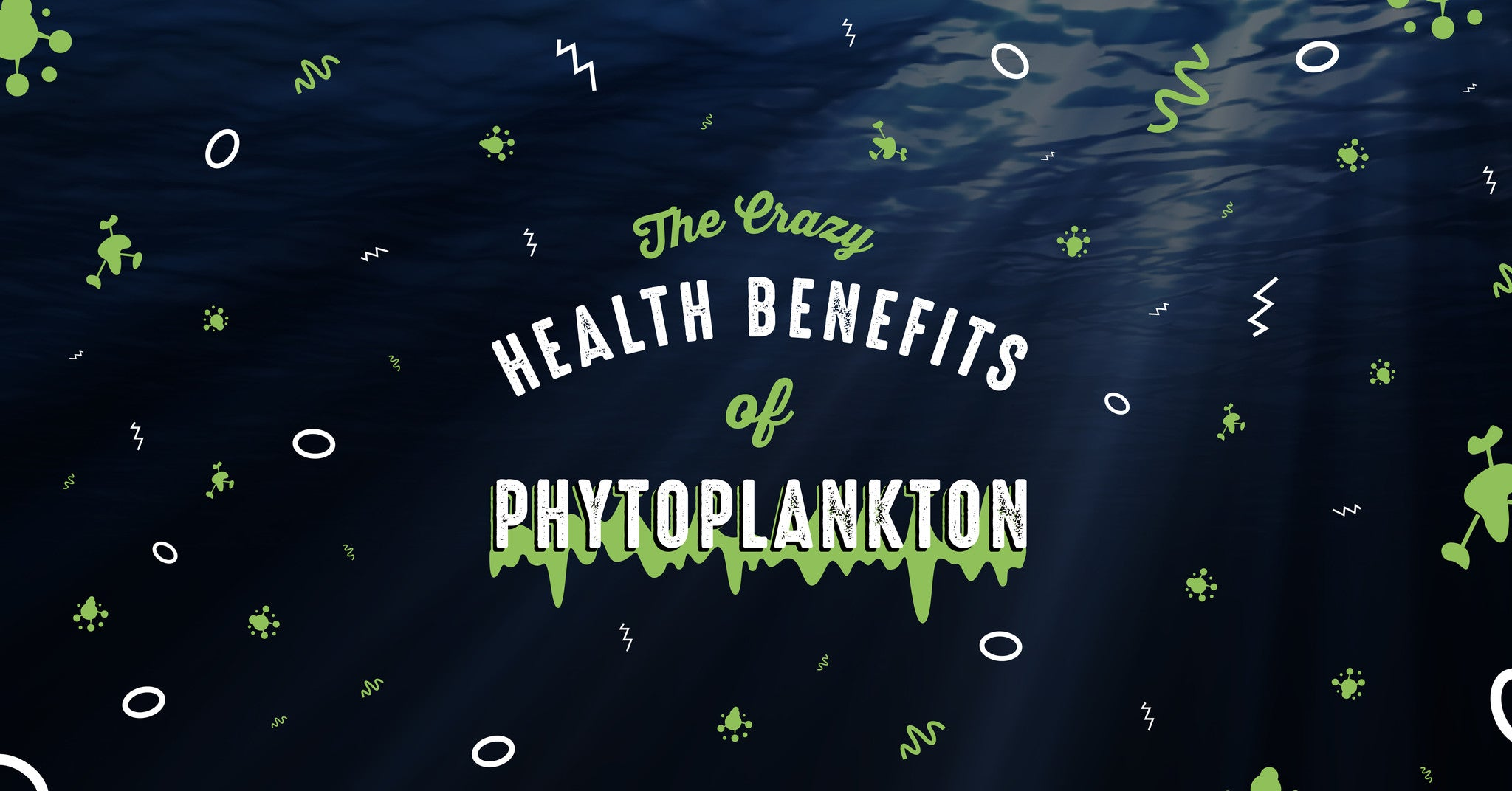 Phytoplankton Benefits