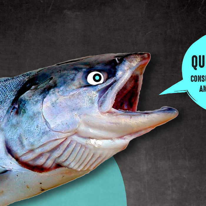 Quick Guide: Consuming Safe and Sustainable Seafood