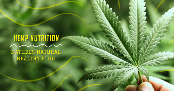 Hemp Nutrition: Nature's Natural Healthy Food