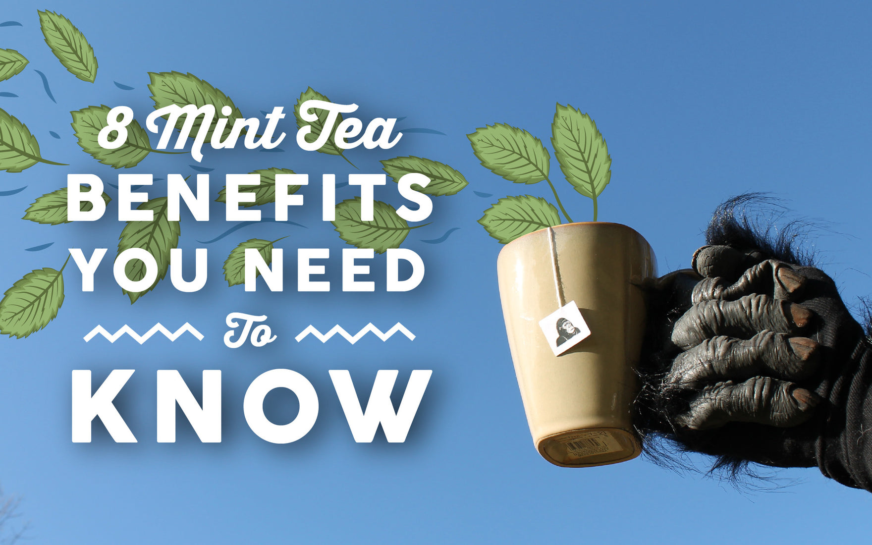 8 Mint Tea Benefits You Need to Know