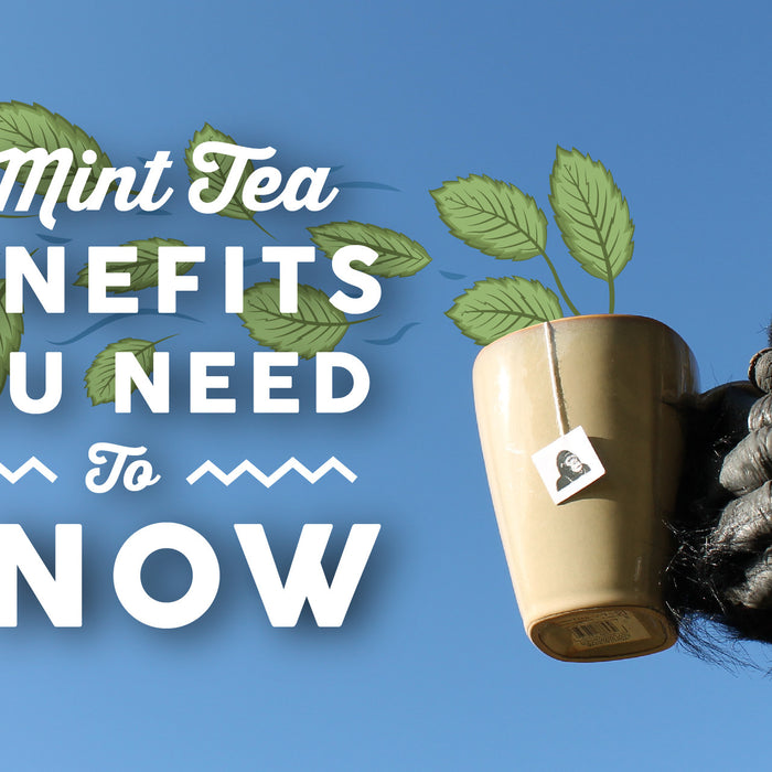 Mint Tea Benefits