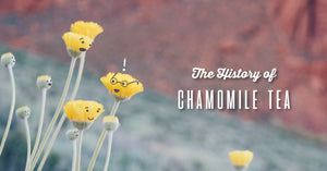 The History of Chamomile Tea