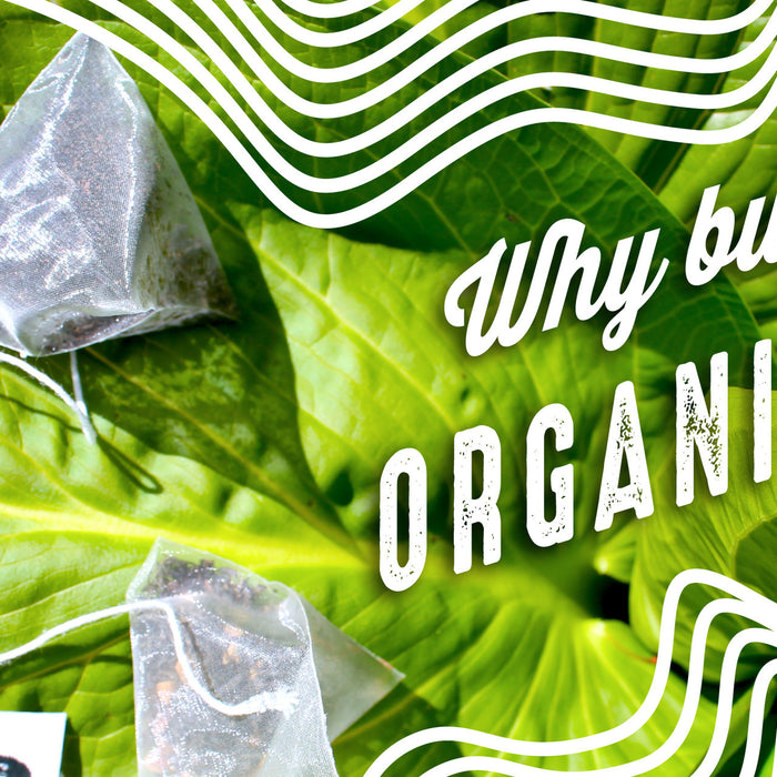 Why Buy Organic Tea?