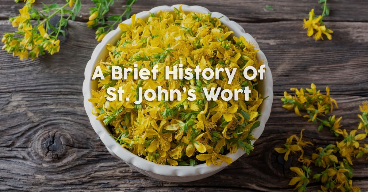 A Brief History of St. Johns Wort