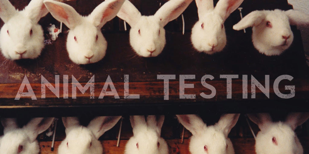 a case study on animal testing In 1981, one of peta's founders set out to gain some experience in a lab and began working undercover at the institute for behavioral research.