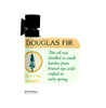 Douglas Fir Oil