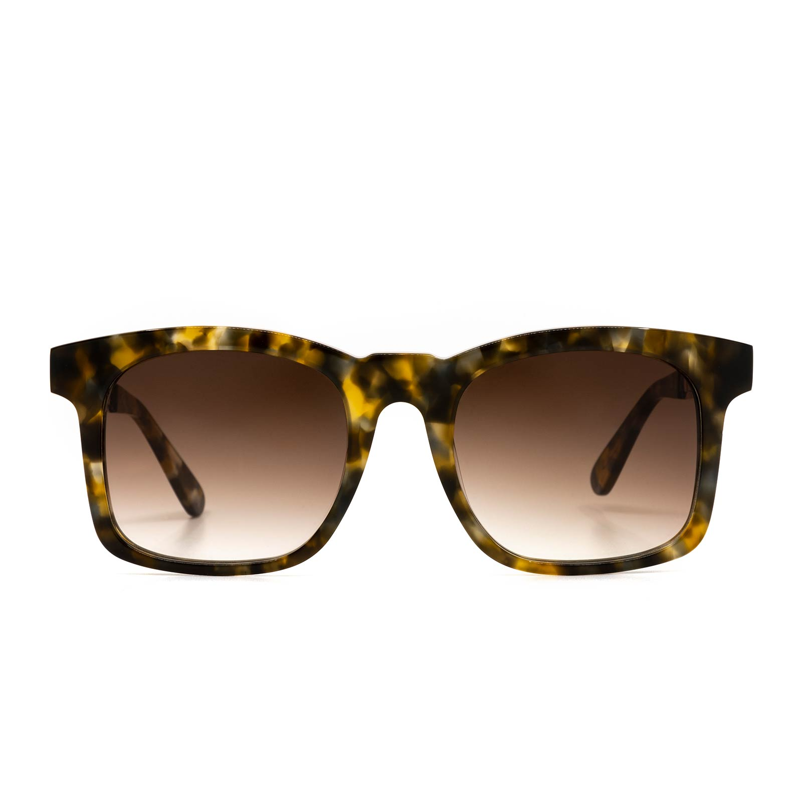 CHANCE - SEA TORTOISE W/GOLD TEMPLES + BROWN GRADIENT