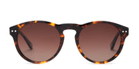 swatch for CODY - AMBER TORTOISE + BROWN GRADIENT + POLARIZED--sold out