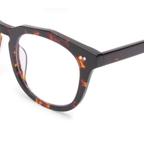 weston dark tortoise and prescription lens detail