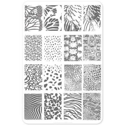Clear Jelly Stamper - Textures Animals - Stamping Plate