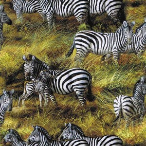 Animal Adventure - Zebra - 5032-451