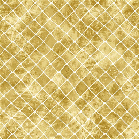 Go Fish - Fish Net -Cream 60-19401