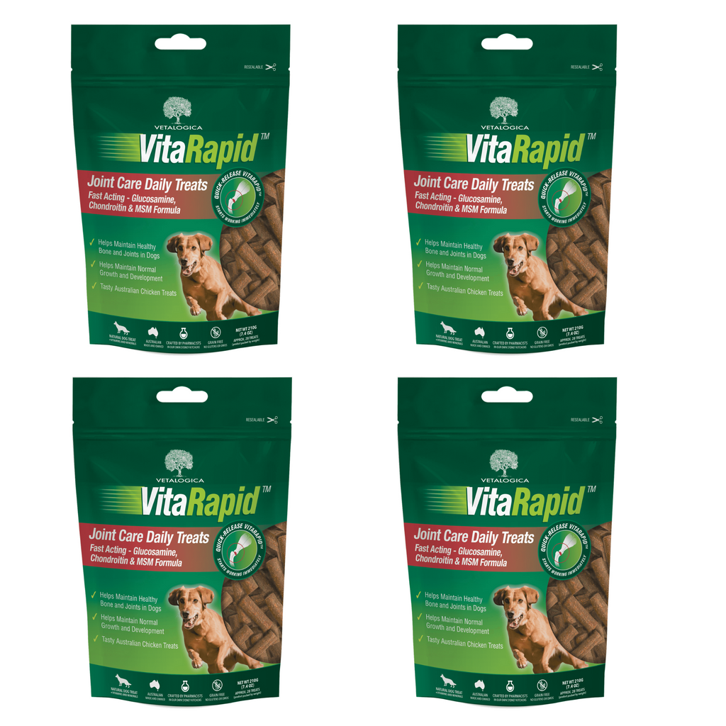 Bundle Pack of 4 x VitaRapid® Joint Care Daily Treats For Dogs - 210g