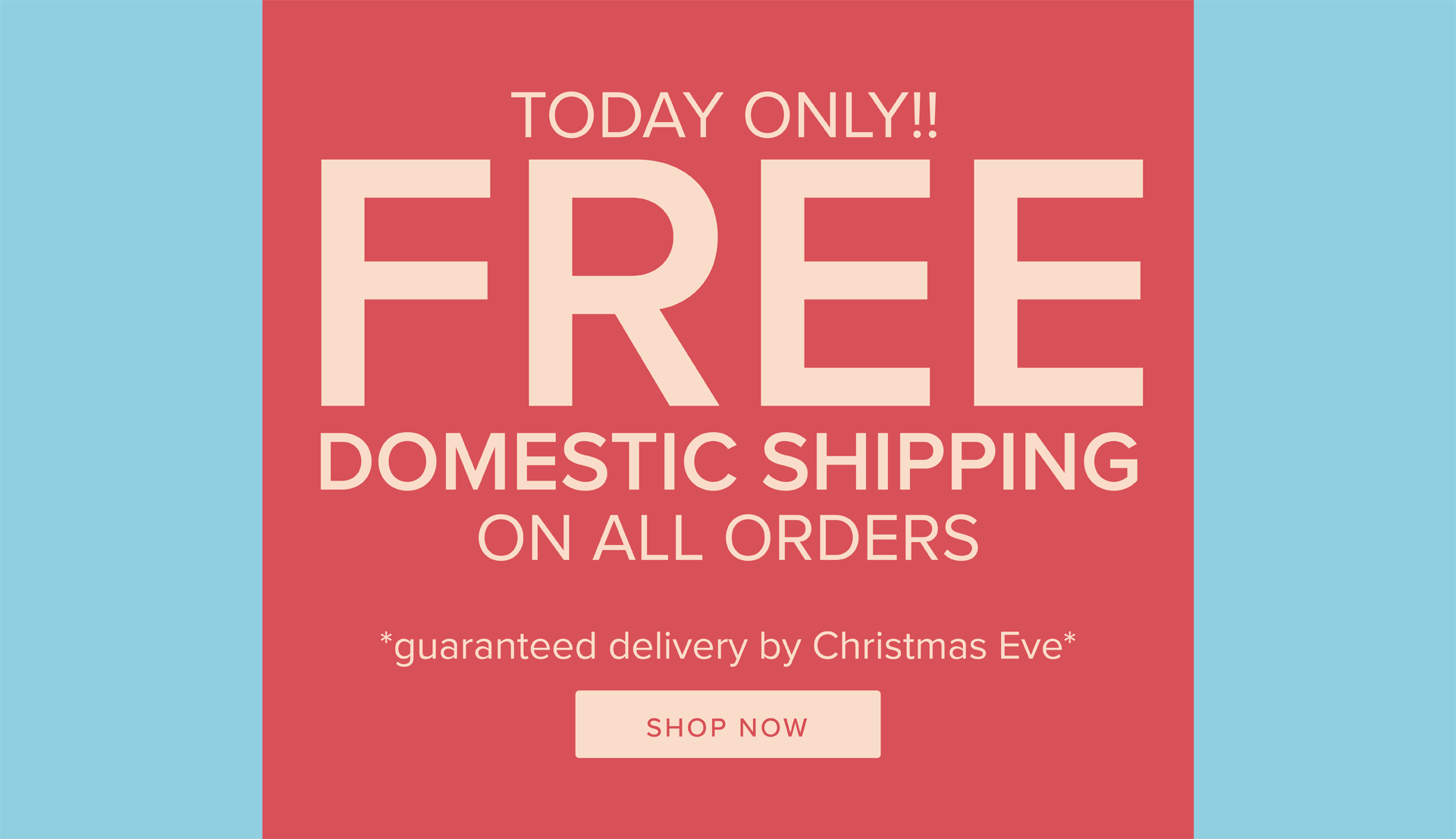 Free Shipping Day (Domestic Only)