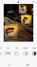 Load image into Gallery viewer, Votive Collection by Natalie Sarabella